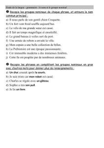 Grammaire Ce2 Nom Commun Et Groupe Nominal Cartable D Une Maitresse